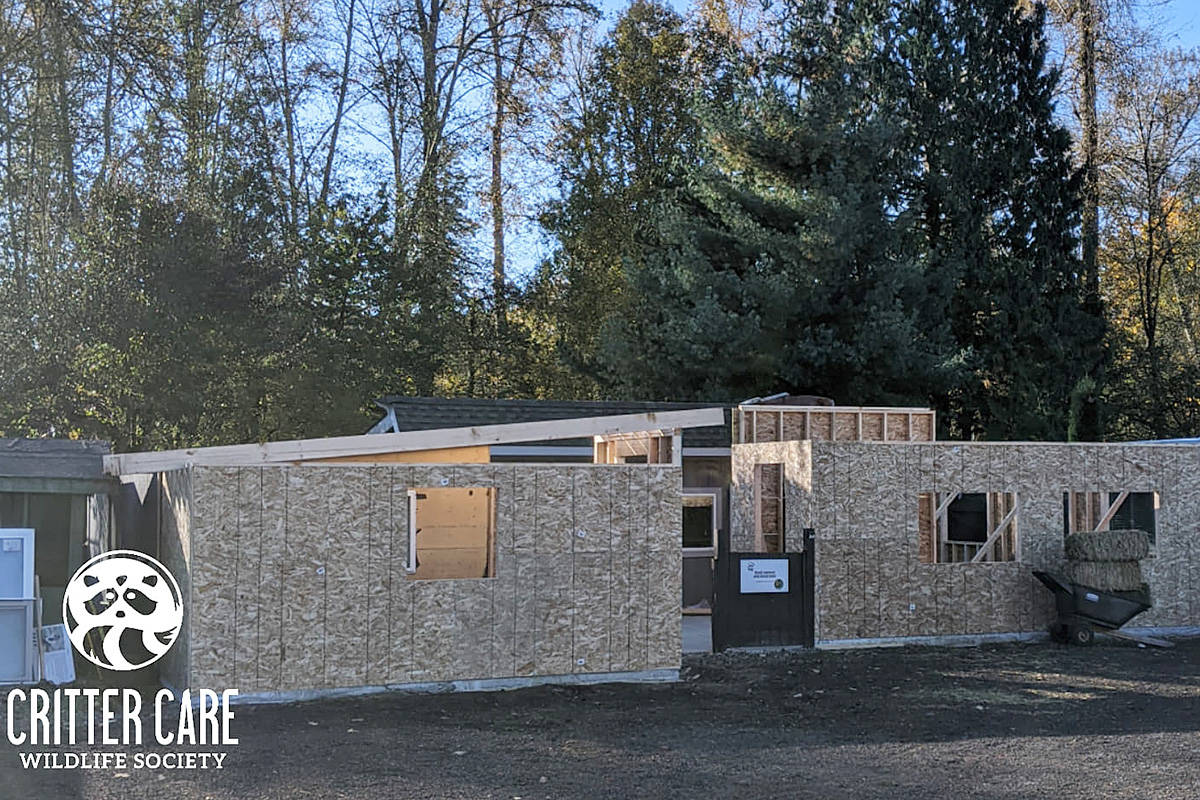 The new facility in construction a few months ago. (Critter Care/Special to the Langley Advance Times)