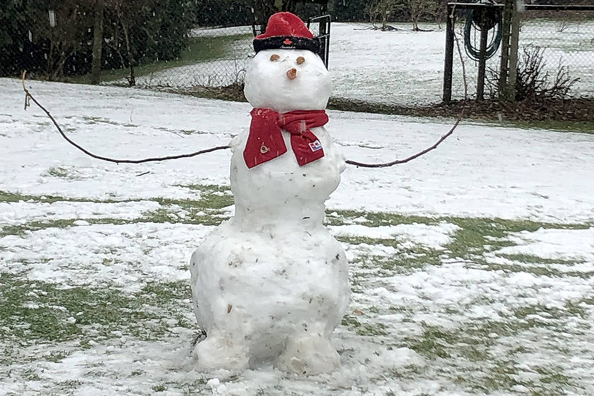 THROUGH YOUR LENS: Frosty came for a visit this past weekend to Sharon Vose's South Langley home. Her grandchildren erected the snowman in her backyard. (Special to Langley Advance Times)
