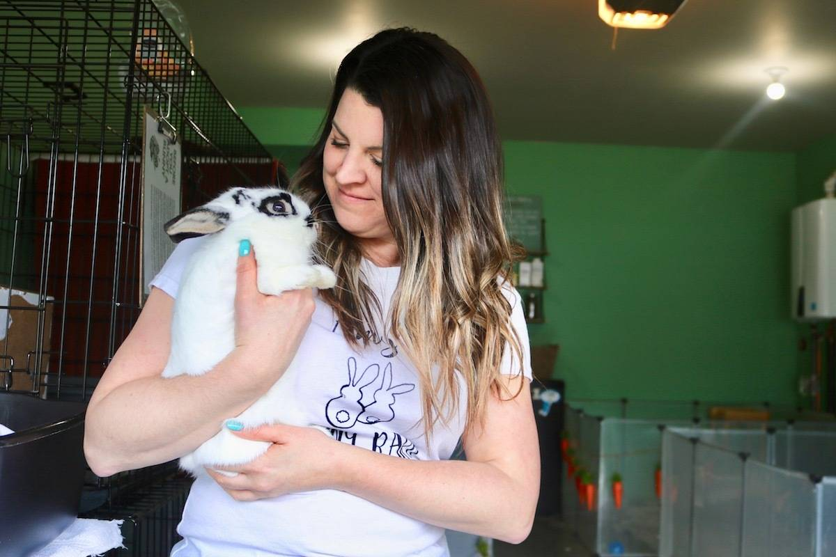 Sooke's Amy McLaughlin holds Theodore, a bunny who will be going to a new owner in Nanaimo within the coming days if all goes will at an upcoming bunny play-date. (Aaron Guillen/News Staff)