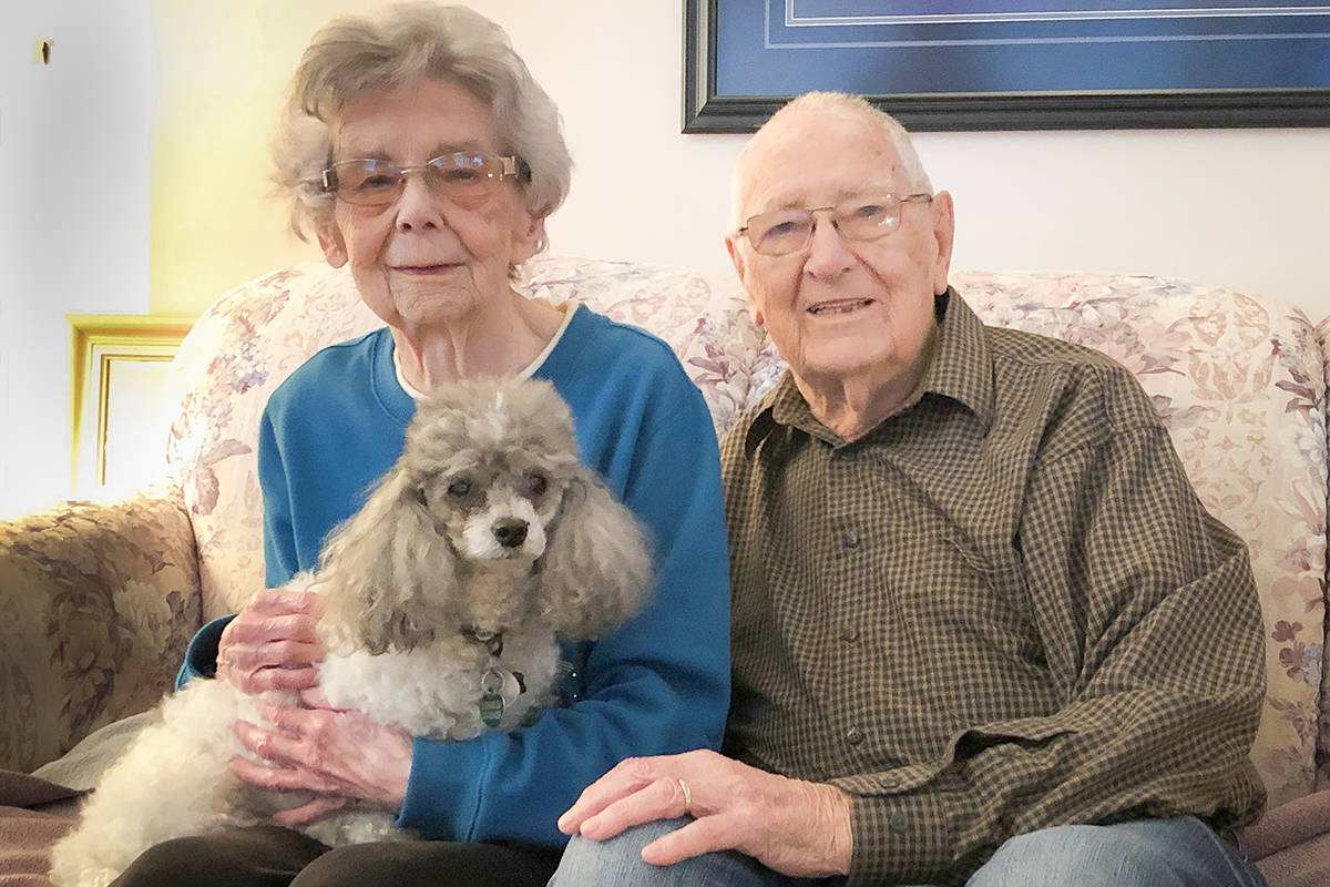 Walnut Grove's Marjorie and John Sutherland have been using ElderDog services since July 2019 to help get their 14-year-old pup Maggie some outdoor time. (Christina Saremba/Special to Langley Advance Times)