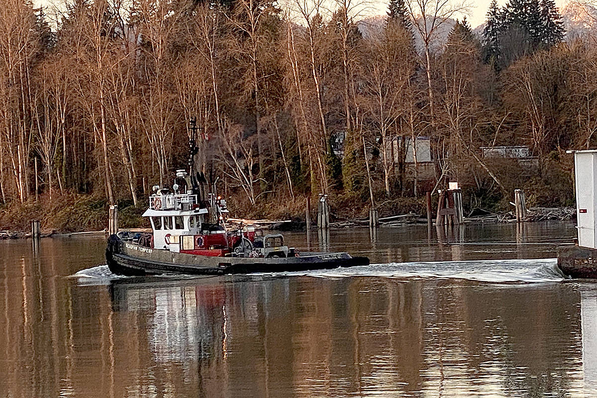 East Maple Ridge resident Maureen Jeknavorian capture a few pictures of life along the Fraser River, while walking through Derby Reach Regional Park recently, including a tug hauling a load down west along the river. (Special to Langley Advance Times)