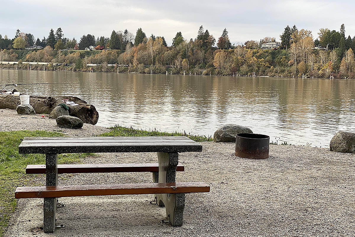 East Maple Ridge resident Maureen Jeknavorian capture a few pictures of life along the Fraser River, while walking through Derby Reach Regional Park recently. (Special to Langley Advance Times)