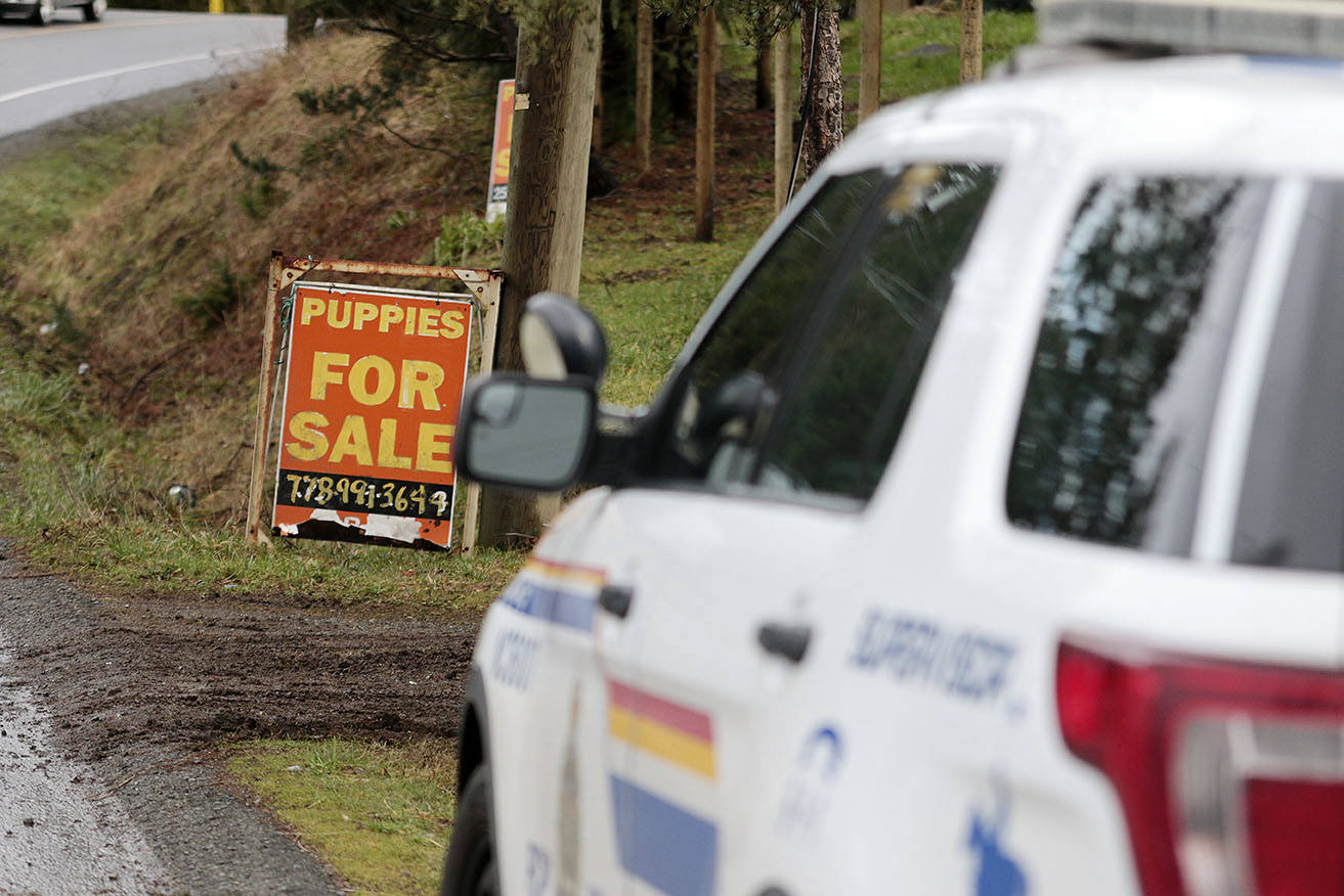 RCMP and BC SPCA vehicles could be seen at an address on Herd Road where the BC SPCA confirmed it was responding to a complaint on Tuesday, Feb. 2. (Kevin Rothbauer/Citizen)