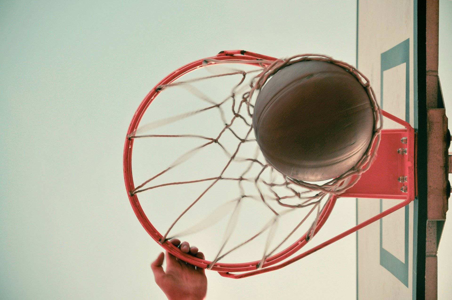 TWU men's and women's basketball teams will each host an intrasquad skills competition on Thursday, Feb. 4, 2021 at the Langley Events Centre as part of the Shoot for the Cure campaign against breast cancer (Pixabay.com)