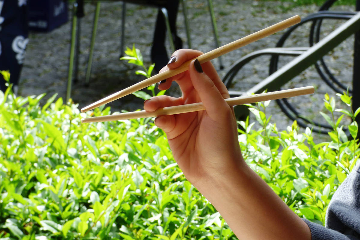 Bamboo – used in chopsticks – is among the world's most sustainable tree species, with coppices harvested in four-year rotations without destroying the trees' root systems. (Pixabay photo)