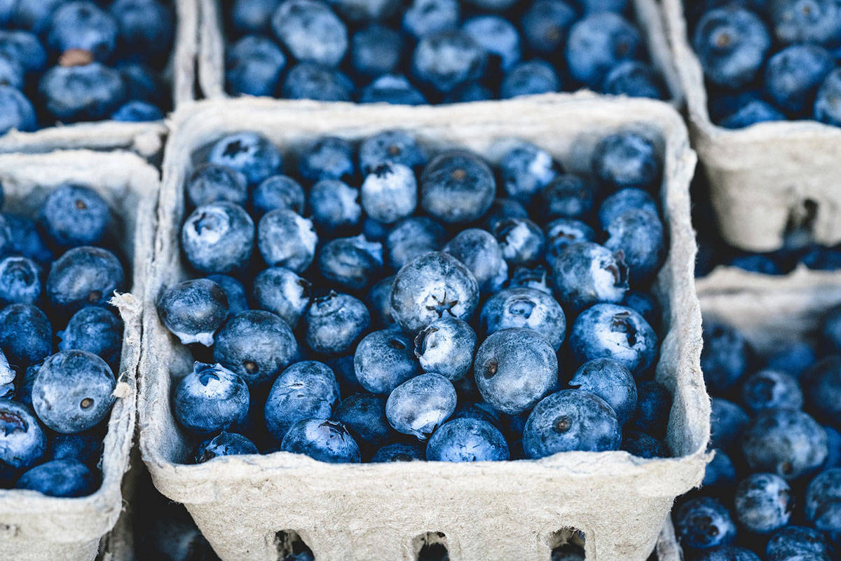 The USITC ruled that Canadian blueberries do not pose a threat to domestic American growers of the berry. (PIxabay photo)