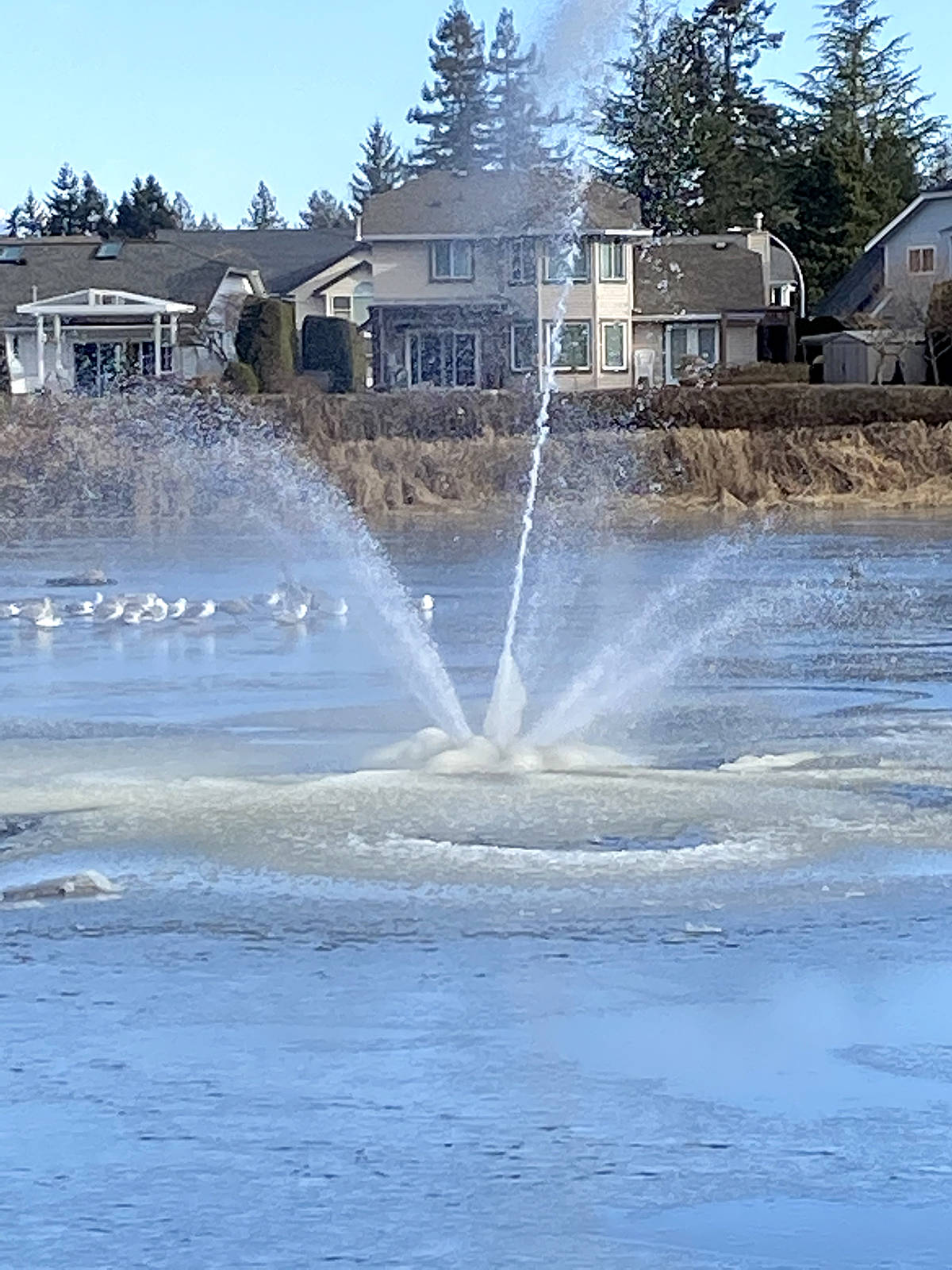 Chandra Surinak shared a picture of the Brydon Lagoon fountain as the deep freeze took hold last week, and began creating ice forms around the fountain base. (Special to Langley Advance Times)
