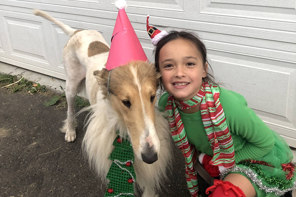 Natalia, a 4-H Cloverbud member and dog Noble, posing for their submission in the Chilliwack Fair photo contest. (Special to The Star)
