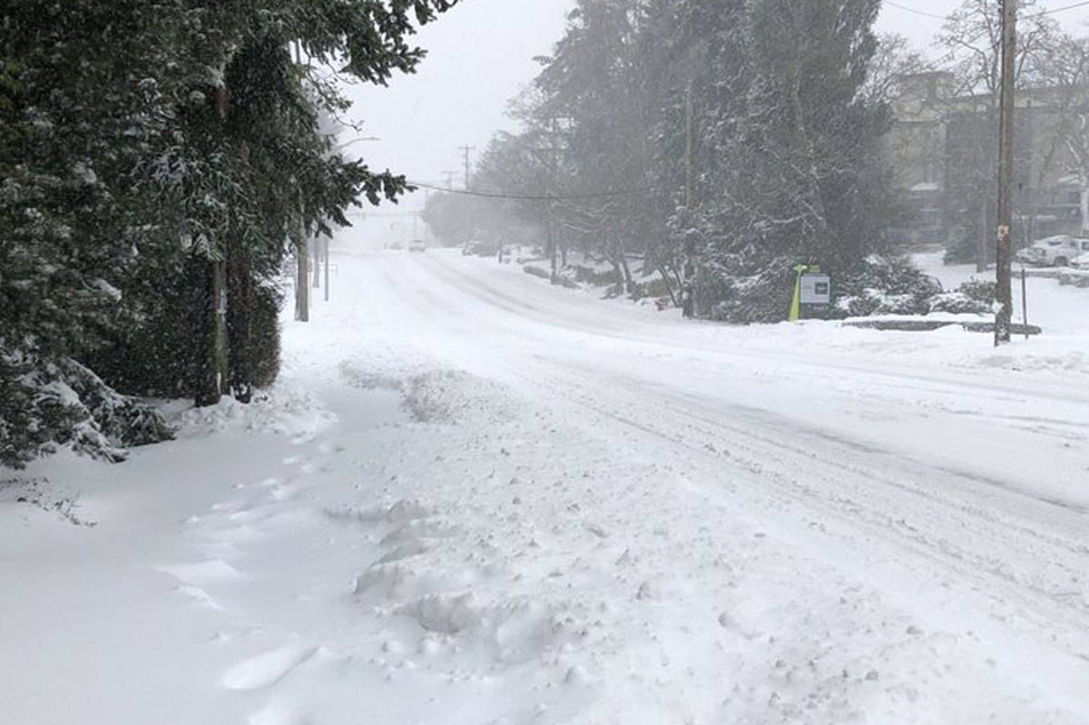 McKenzie Avenue in Saanich was unrecognizable on the morning of Feb. 13 before the municpal snow plows came by. (Devon Bidal/News Staff)