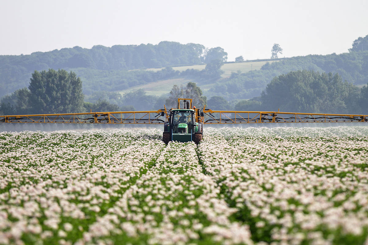 Commercial farmers spray their potato fields with fungicide to help protect the plants against late blight. (Joe Allen/Flickr)
