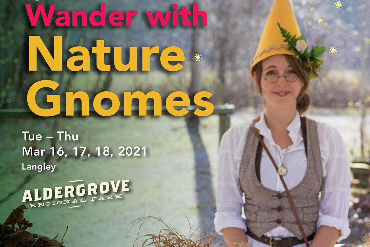 Aldergrove Regional Park will be home to a child-friendly nature gnome tour in March. (Special to The Star)