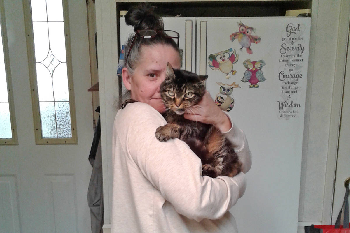 Cheryl Roberts said she's having to consider putting down her cat, Burley, because she can't afford his dental surgery. (Cheryl Roberts photo)