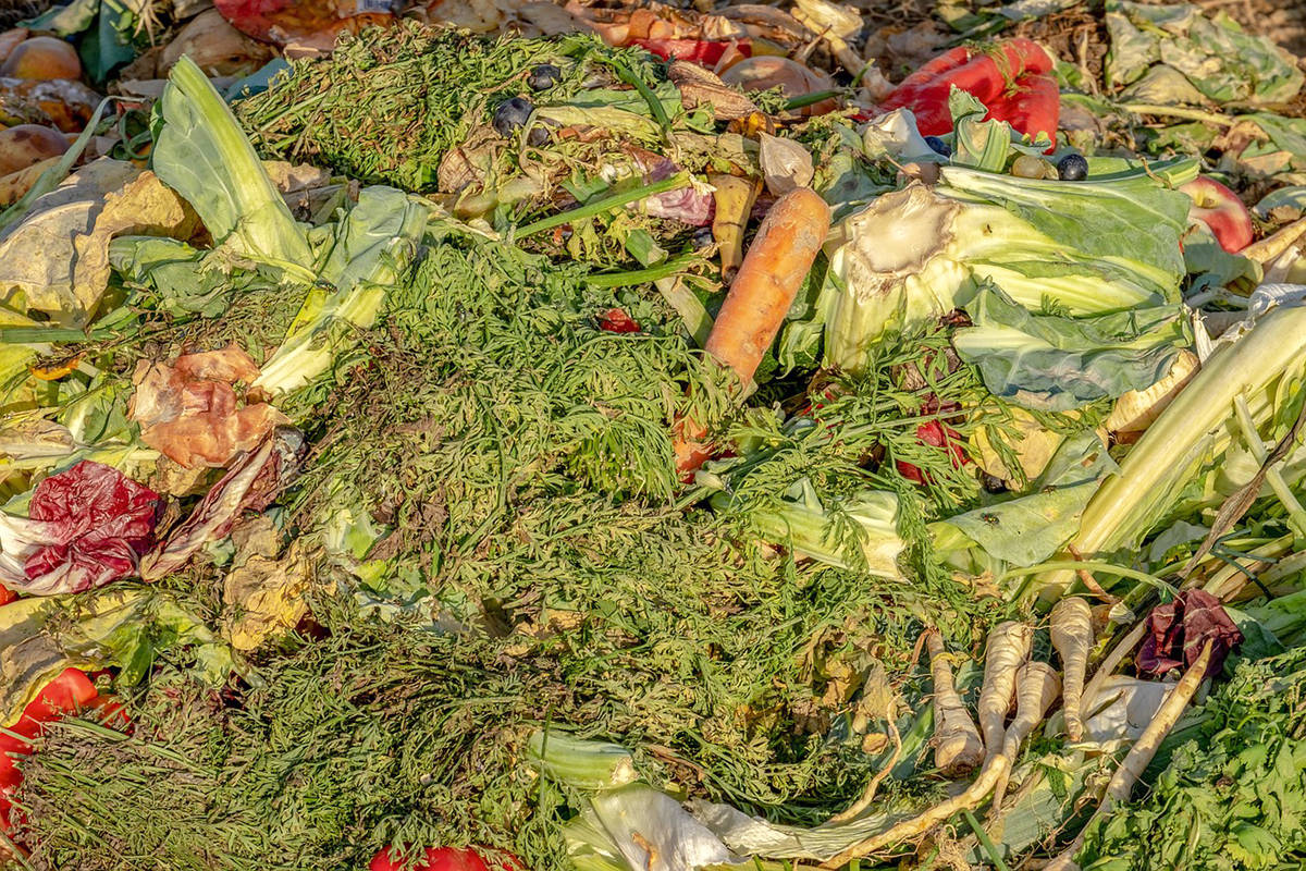 A third of the food raised or prepared globally is wasted, which depletes resources, says columnist. (Stock photo)