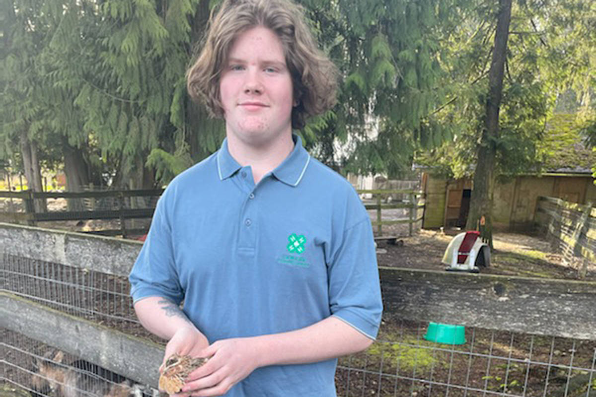 Langley's Otter Flying Feathers 4-H Club is adapting and persevering, according to A.J. Porohowski, club president and 4H ambassador, seen here by his barn, holding a quail (Special to Langley Advance Times)