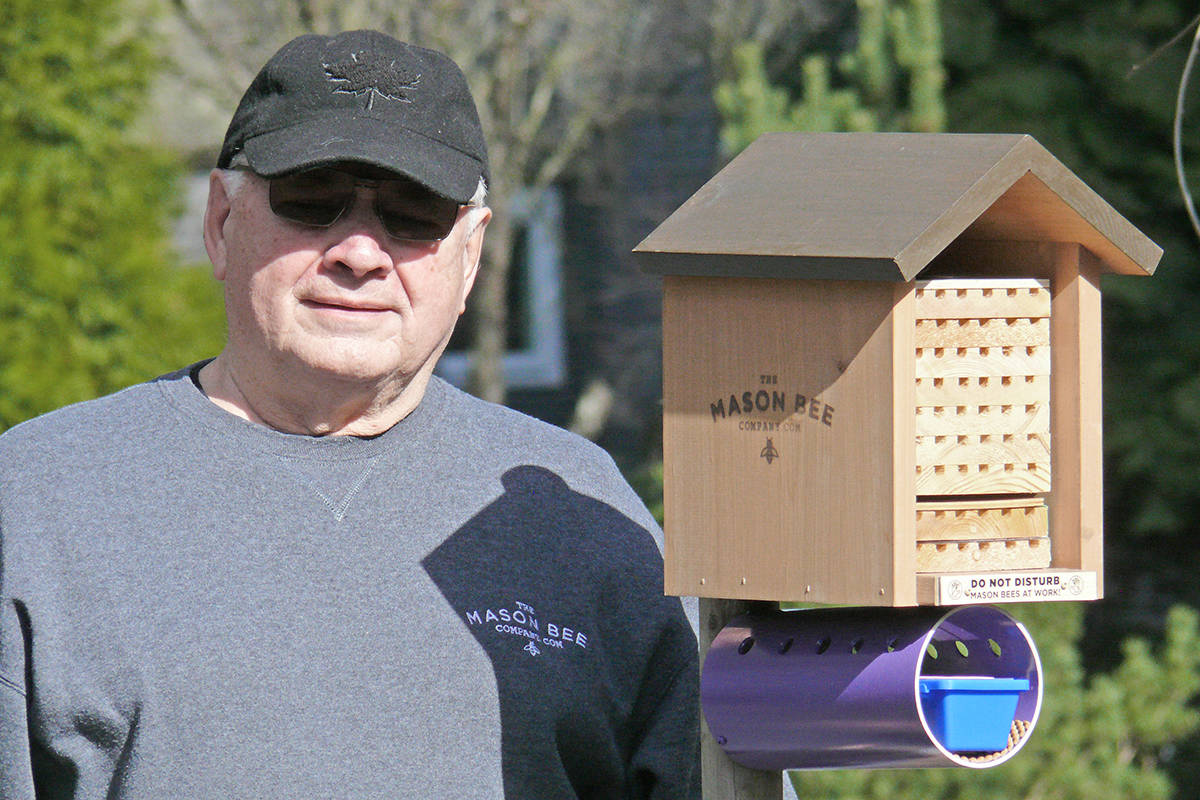 Werner Klann with one of his Mason Bee homes, in Langley City's Sendall Botanical Gardens (Dan Ferguson/Langley Advance Times)