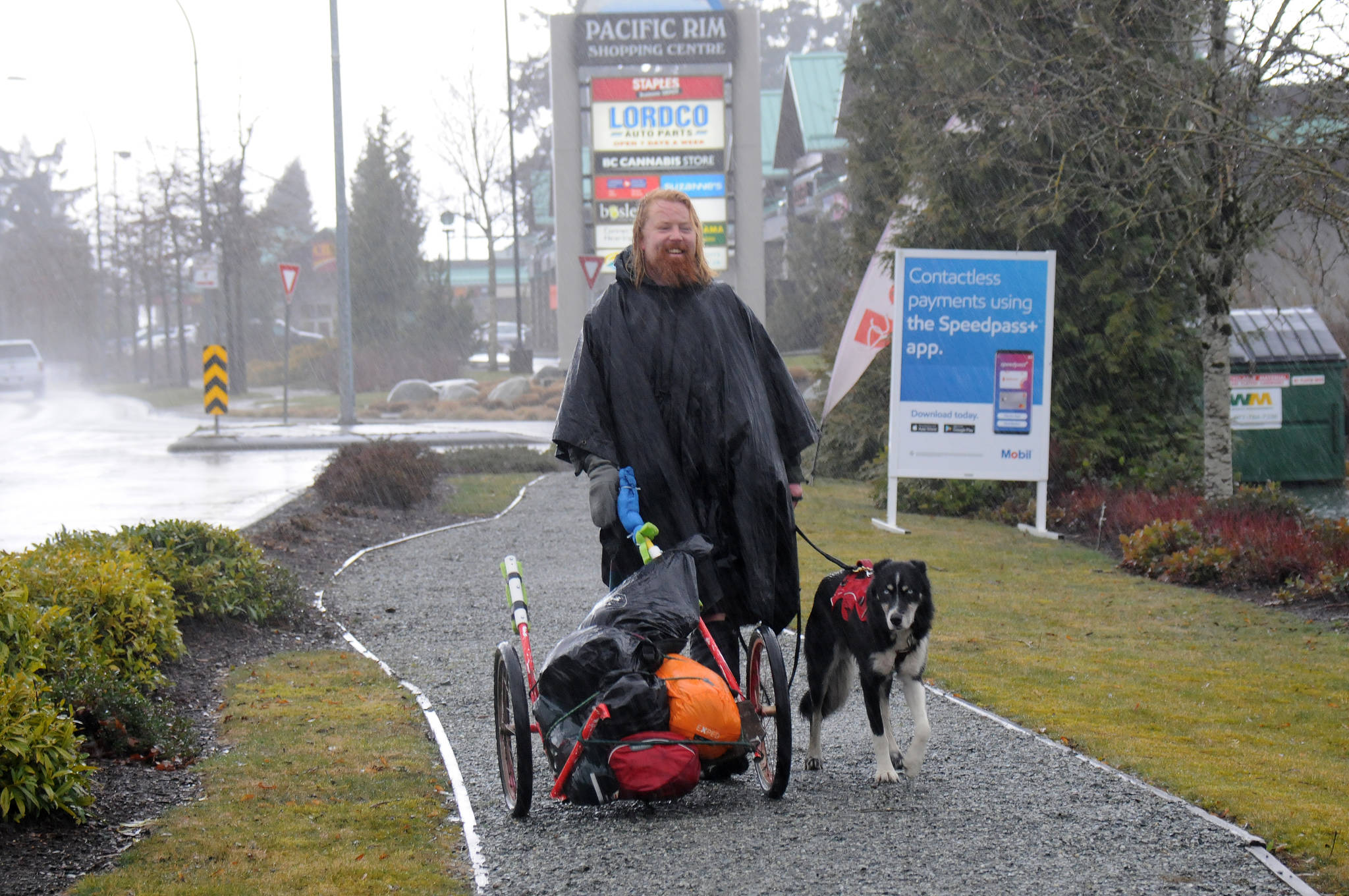 Michael Yellowlees and his dog Luna arrive at Pacific Rim Shopping Centre on Day 5 of their trip across Canada. Yellowlees, from Dunkeld and Birnham in Scotland, is raising money for Trees for Life. (SUSAN QUINN/ Alberni Valley News)