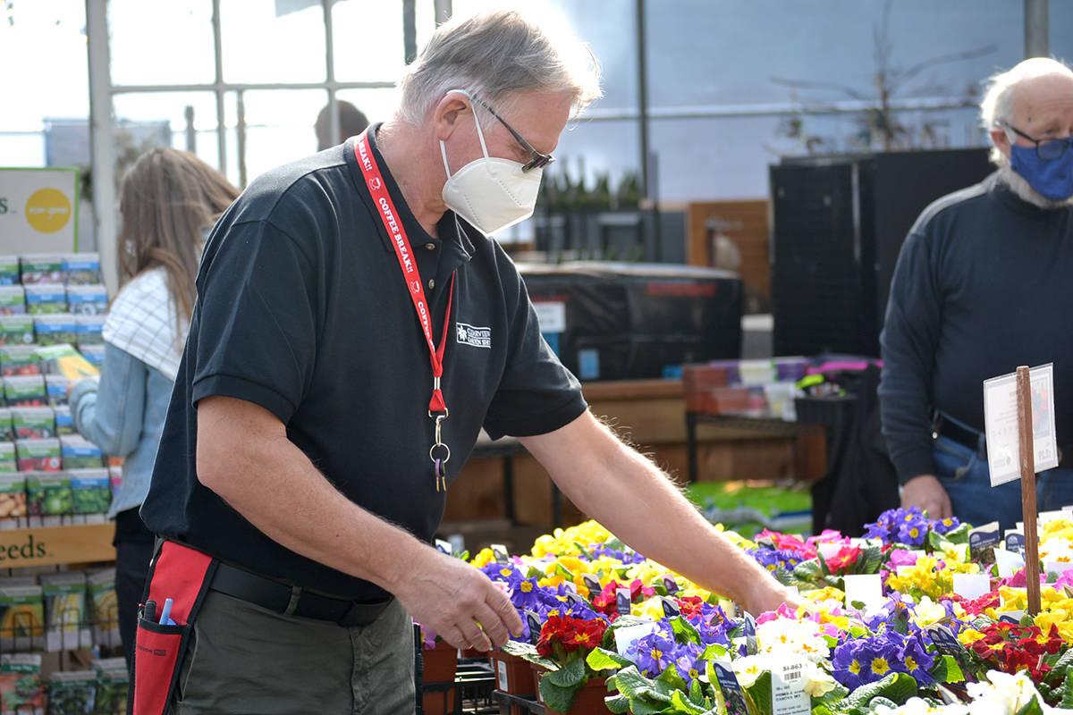 Rod Brewer gets ready for spring planting at Clearview Garden Shop. (Ryan Uytdewilligen/Aldergrove Star)