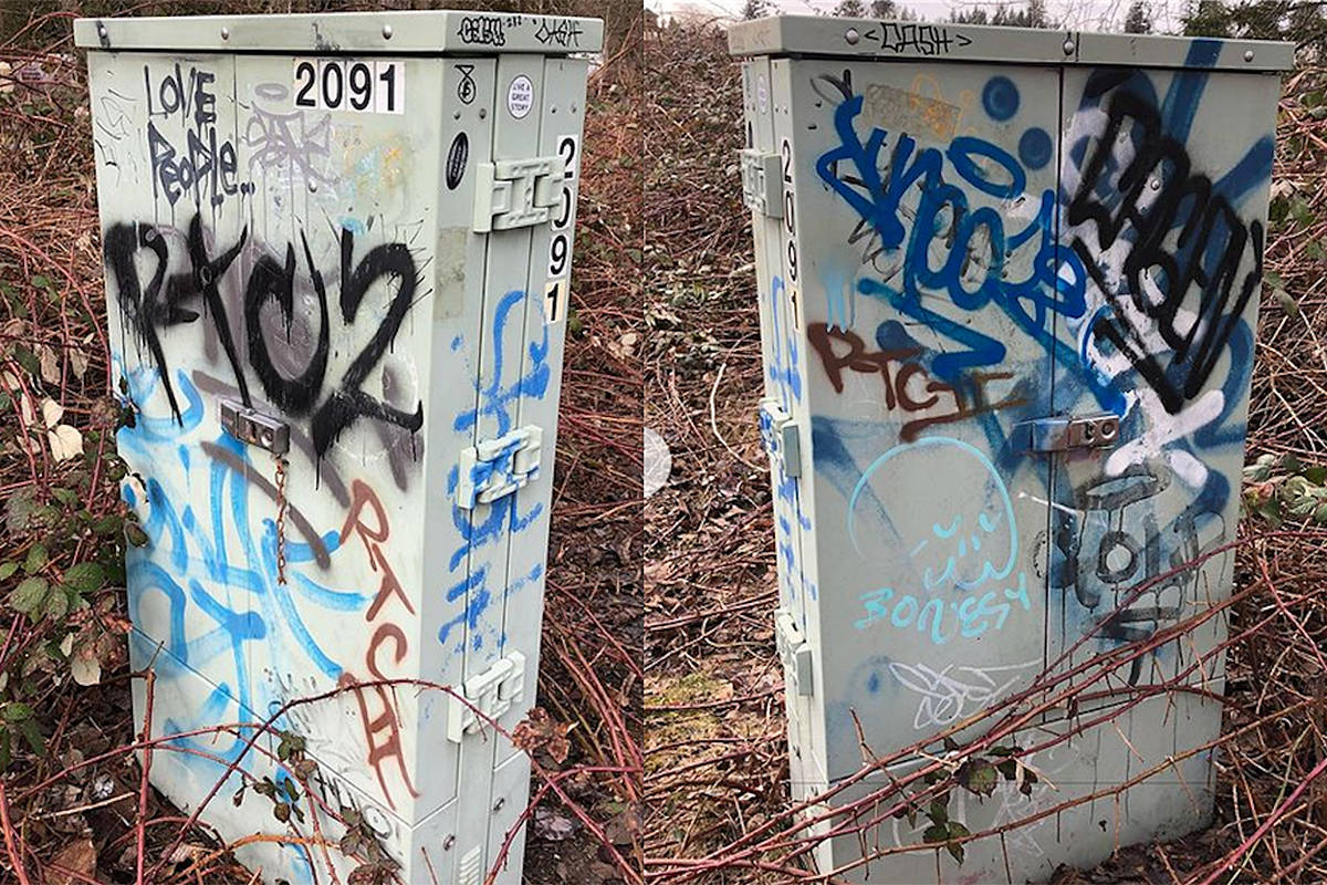 Some examples of spray-painted graffiti found by Fort Langley resident Bryan Miller, who is scheduled to appear before Langley Township council on March 8, 2021, to argue for a bylaw that would restrict spray paint sales to minors (Special to Langley Advance Times)