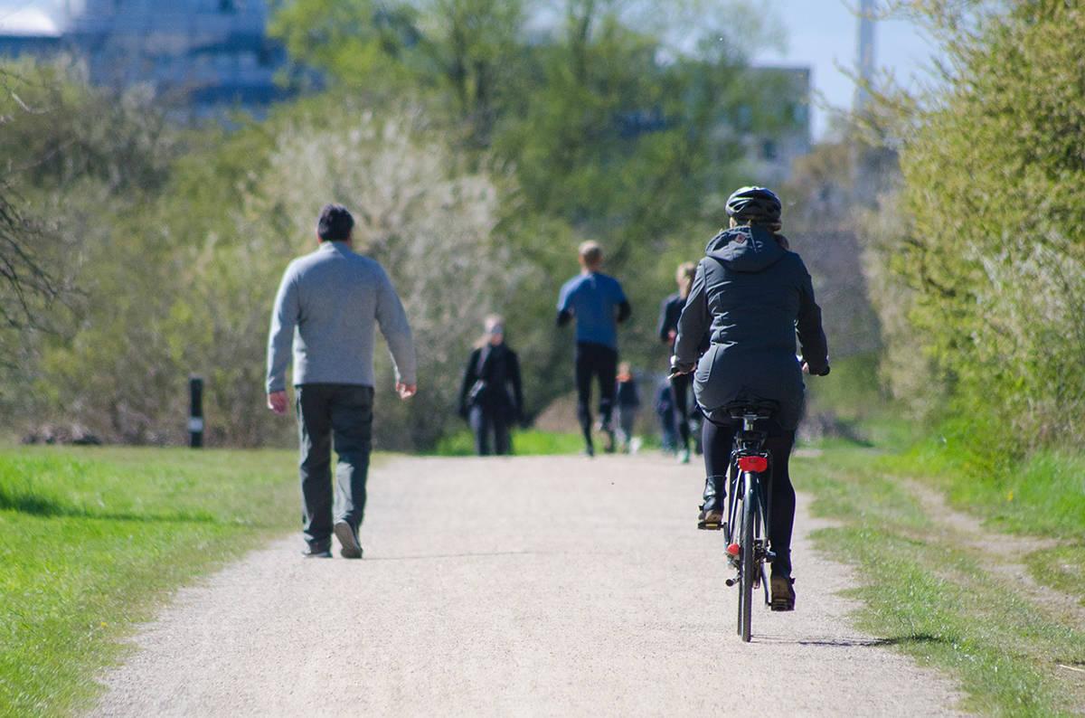 Maple Ridge has banned cycling on sidewalks. (THE NEWS/files)