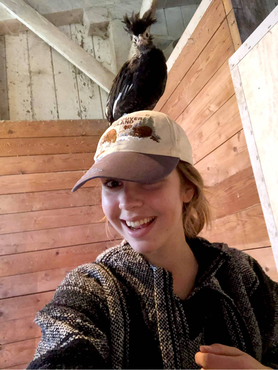 Staff bond with birds at Kensington Prairie Farm. (Special to The Star)