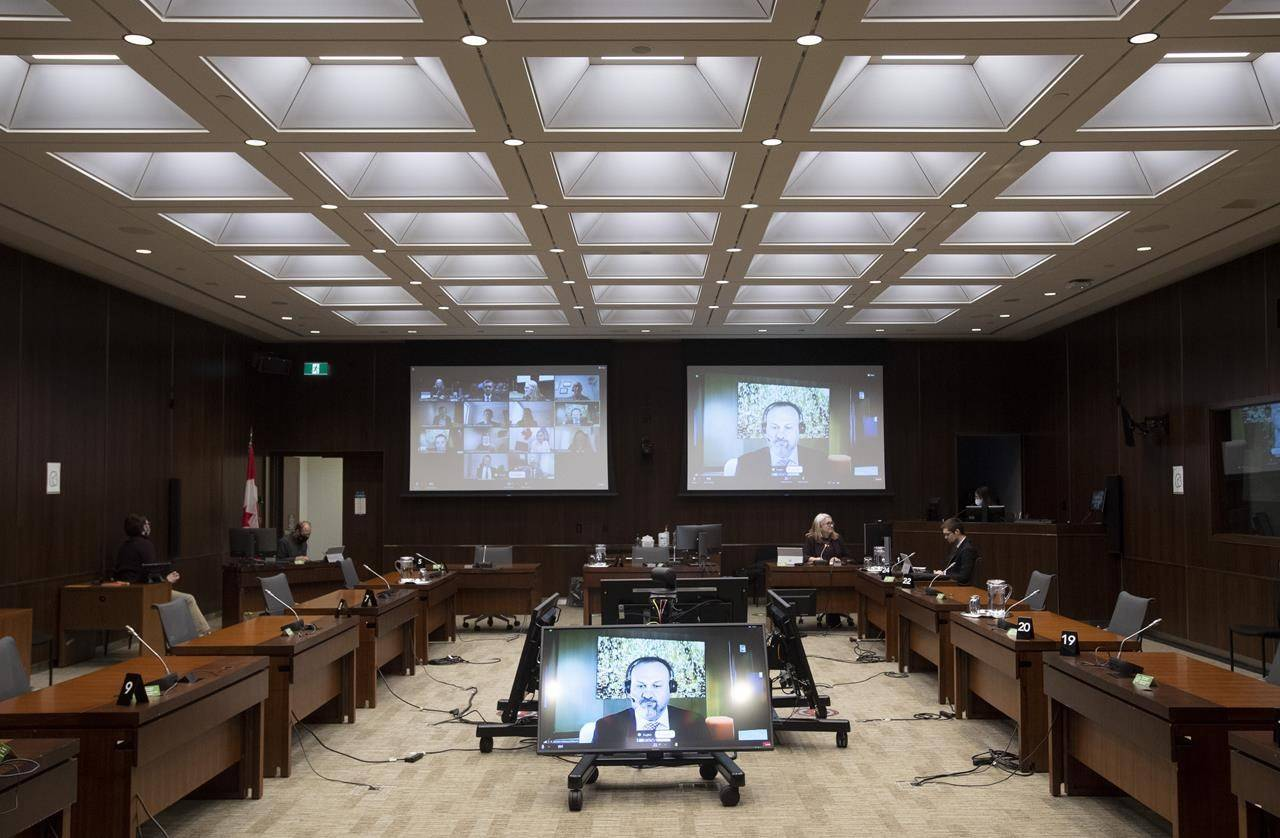 MindGeek Canada managing director Feras Antoon appears on screen during a sound check as he waits to appear virtually before the House of Commons Standing Committee on Access to Information, Privacy and Ethics on Friday, Feb. 5, 2021 in Ottawa. THE CANADIAN PRESS/Adrian Wyld