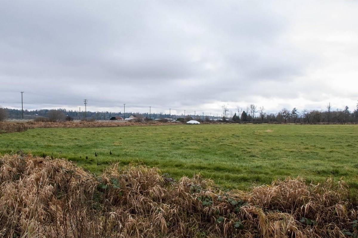 Farmland in Surrey. (Photo: Surrey.ca)