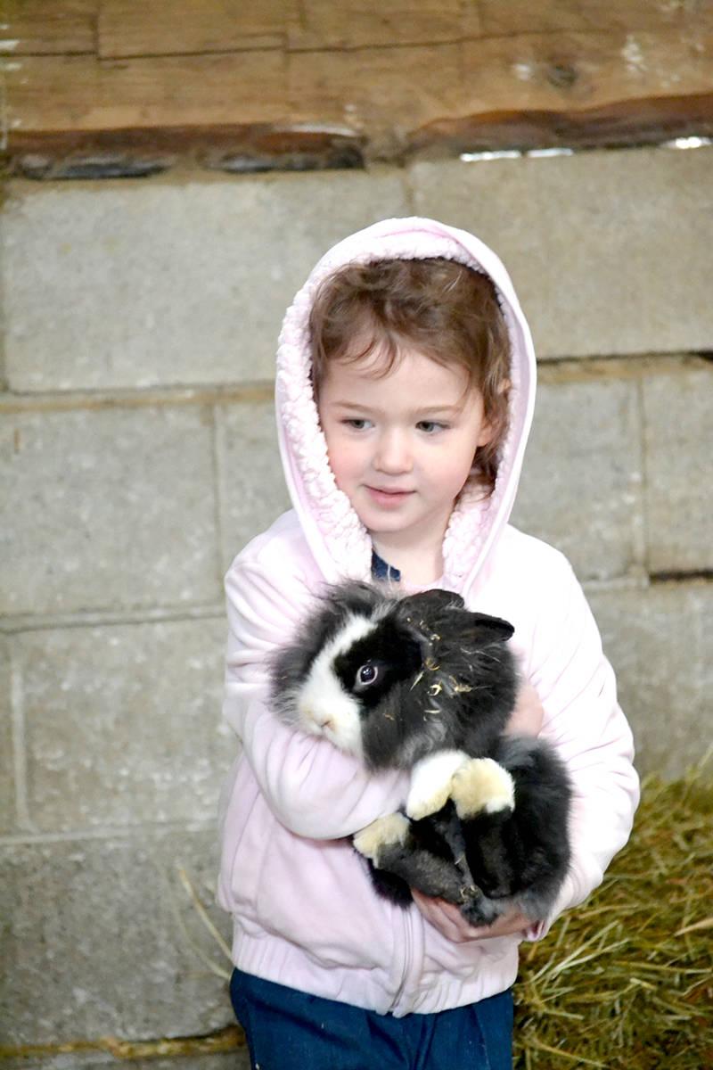 Three year old Scarlett finds a new friend at Aldor Acres. (Ryan Uytdewilligen/Langley Advance Times)