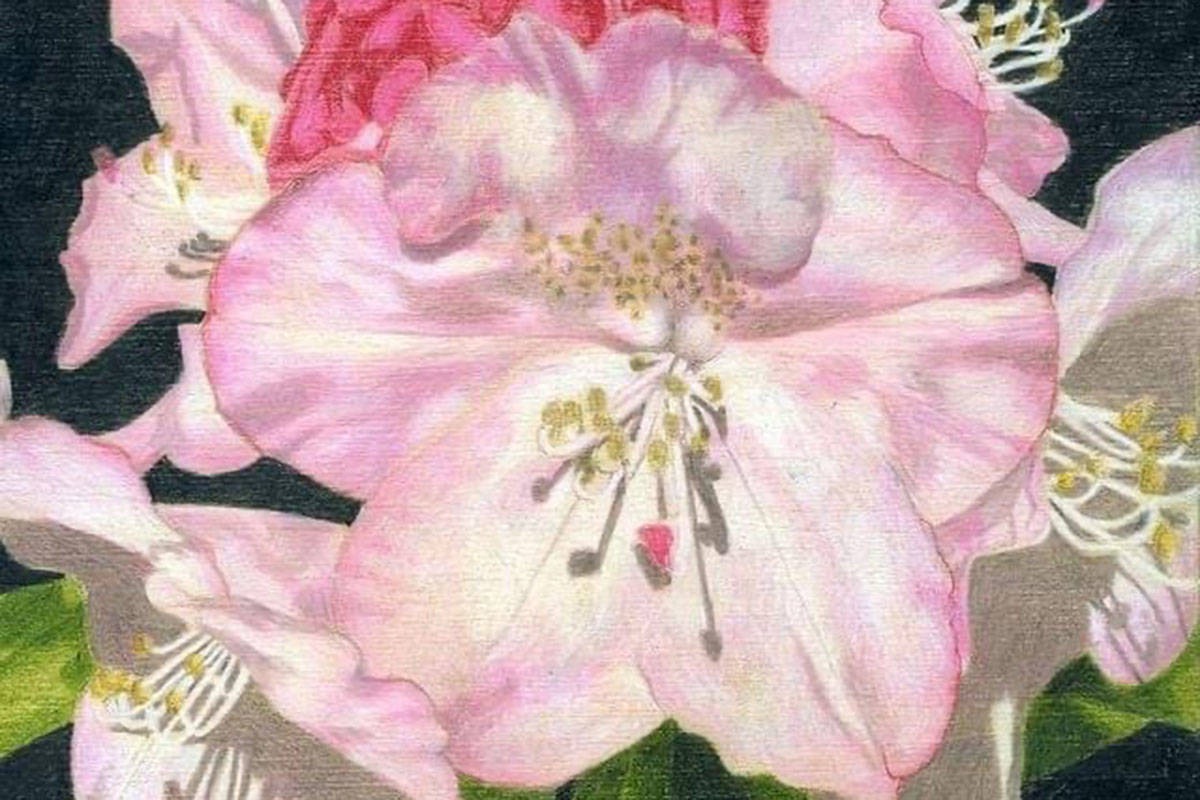 Fort Langley Artist Group members are exhibiting works in the show called <em>Spring</em>. (Special to The Star)