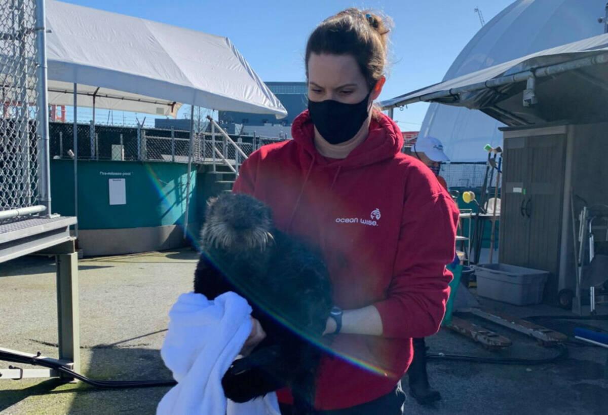 Quatse with the Marine Mammal Rescue Centre staff. (Marine Mammal Rescue Centre photo)
