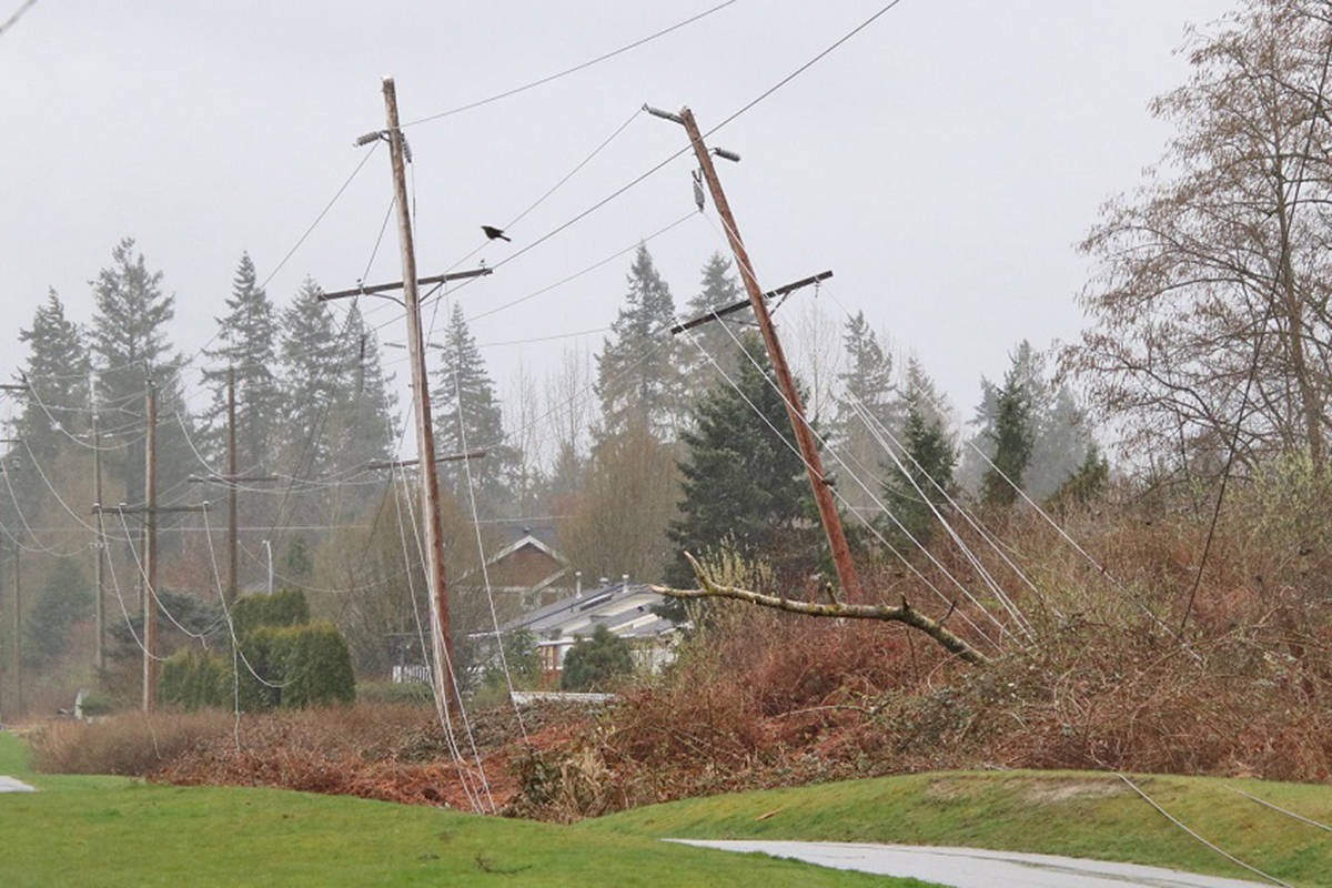 Thousands in Walnut Grove were without power late Sunday morning, March 28 (Shane MacKichan/Special to Langley Advance Times)