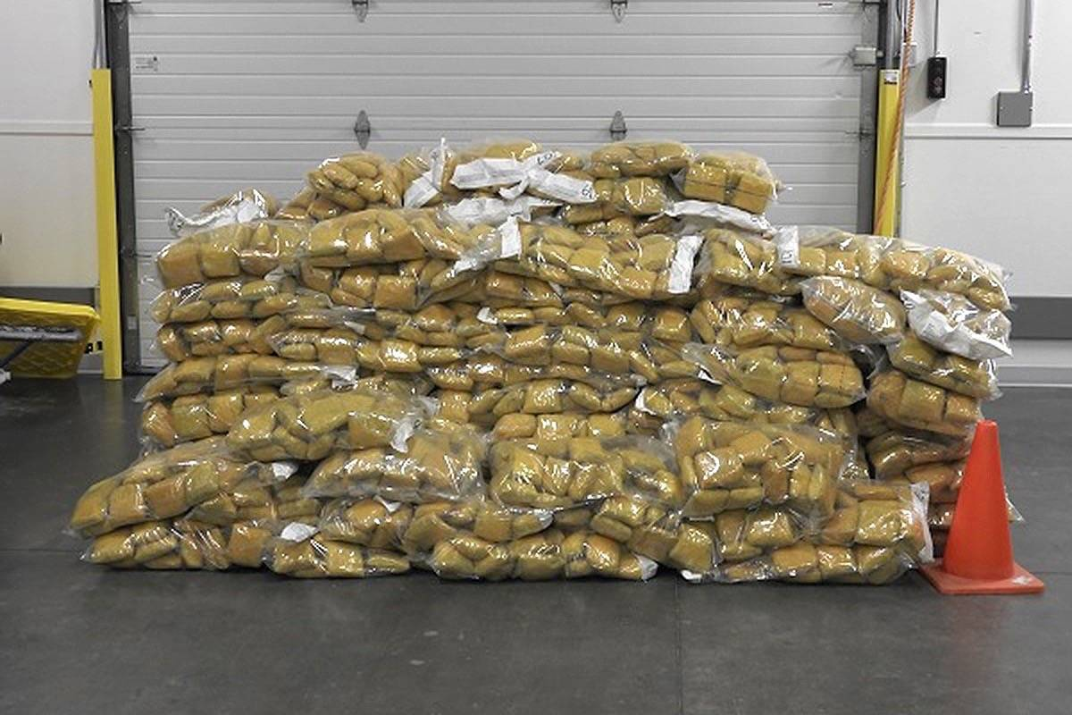 In early February 2021, RCMP and CBSA officers seized 1,000 kilograms of opium from two freight containers at Deltaport. (RCMP photo)