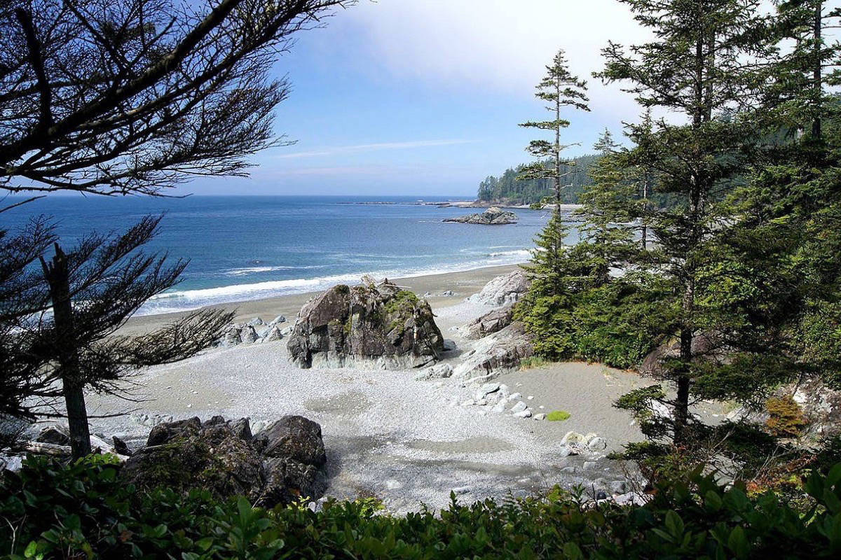 A view of the West Coast Trail near Nitinat Lake. (David Enstrom - Wikipedia Commons)