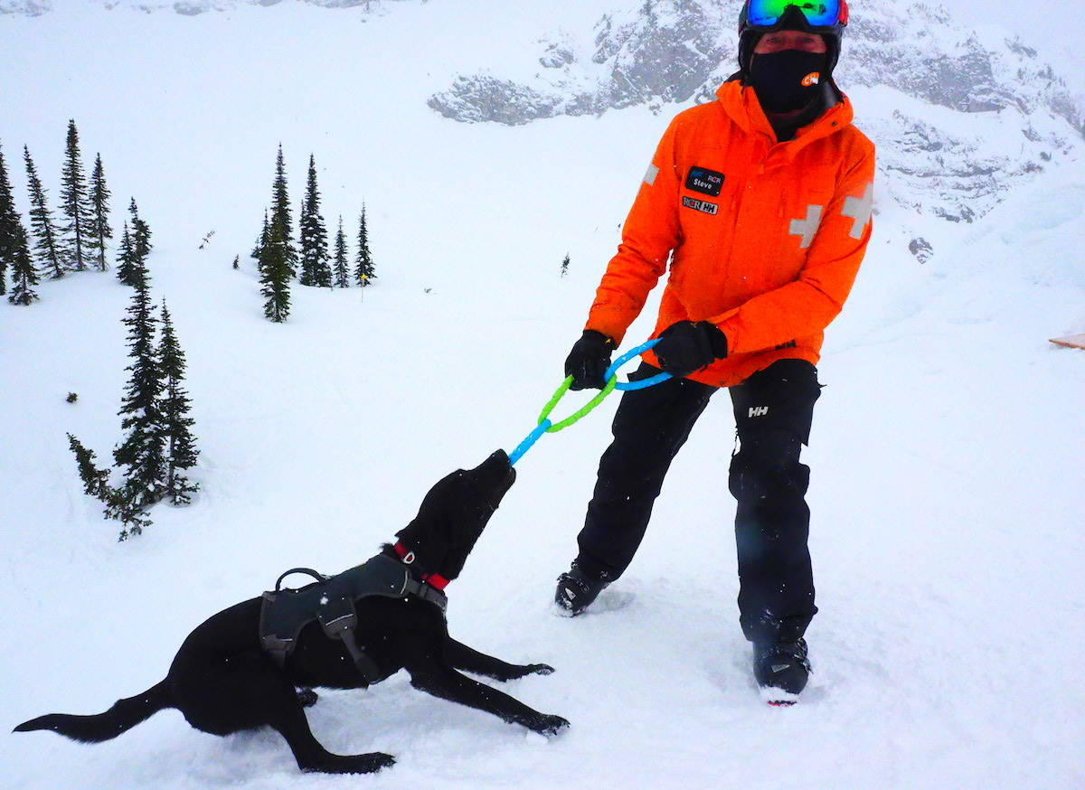Fernie ski patroller Steve Morrison with his avalanche rescue dog in training, Sadie. (Scott Tibballs / The Free Press)