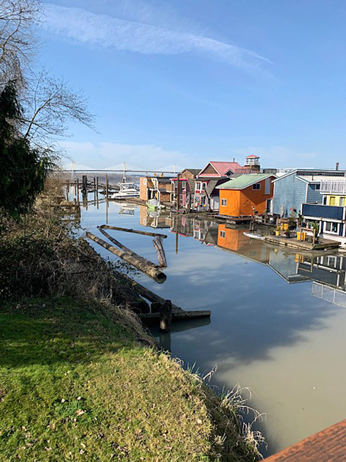 Allan Craig shared this picture of life of the water in North Langley, in the float home community at the north end of 208th Street, near Derby Reach. (Special to Langley Advance Times)