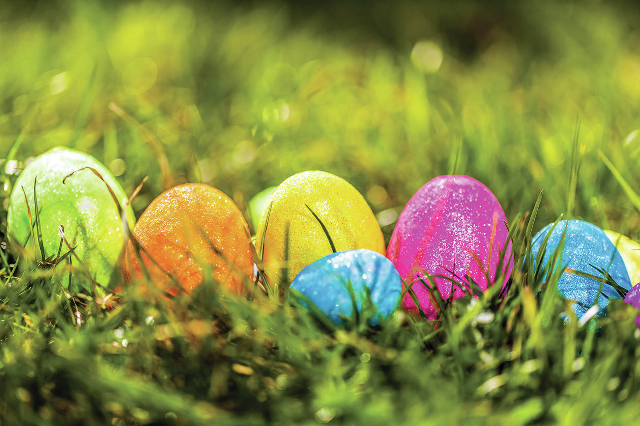 Easter egg hunts are part of the Easter festivities. Do you know which country produces the most poultry eggs? (Black Press file photo)