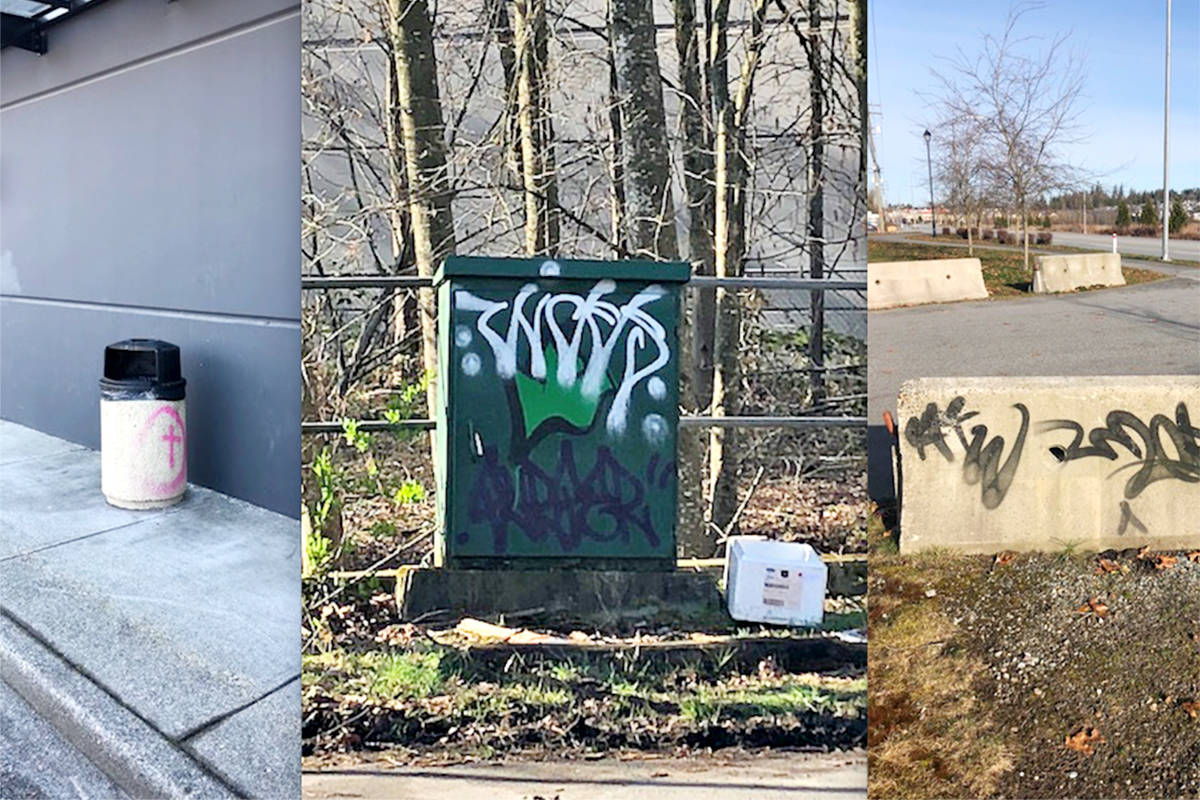 Some of the more than 80 examples of graffiti found near the Township of Langley civic building on Saturday, March 28. (Special to Langley Advance Times)