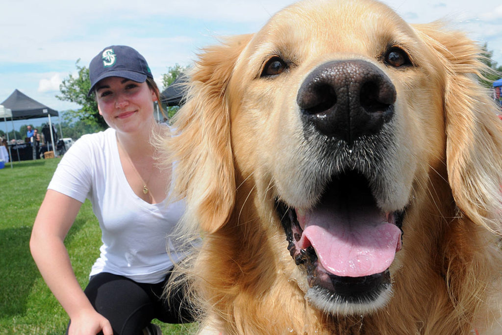 St. John Ambulance therapy dog volunteer Ashley Desautels and her therapy dog Beau. (Colleen Flanagan/THE NEWS)