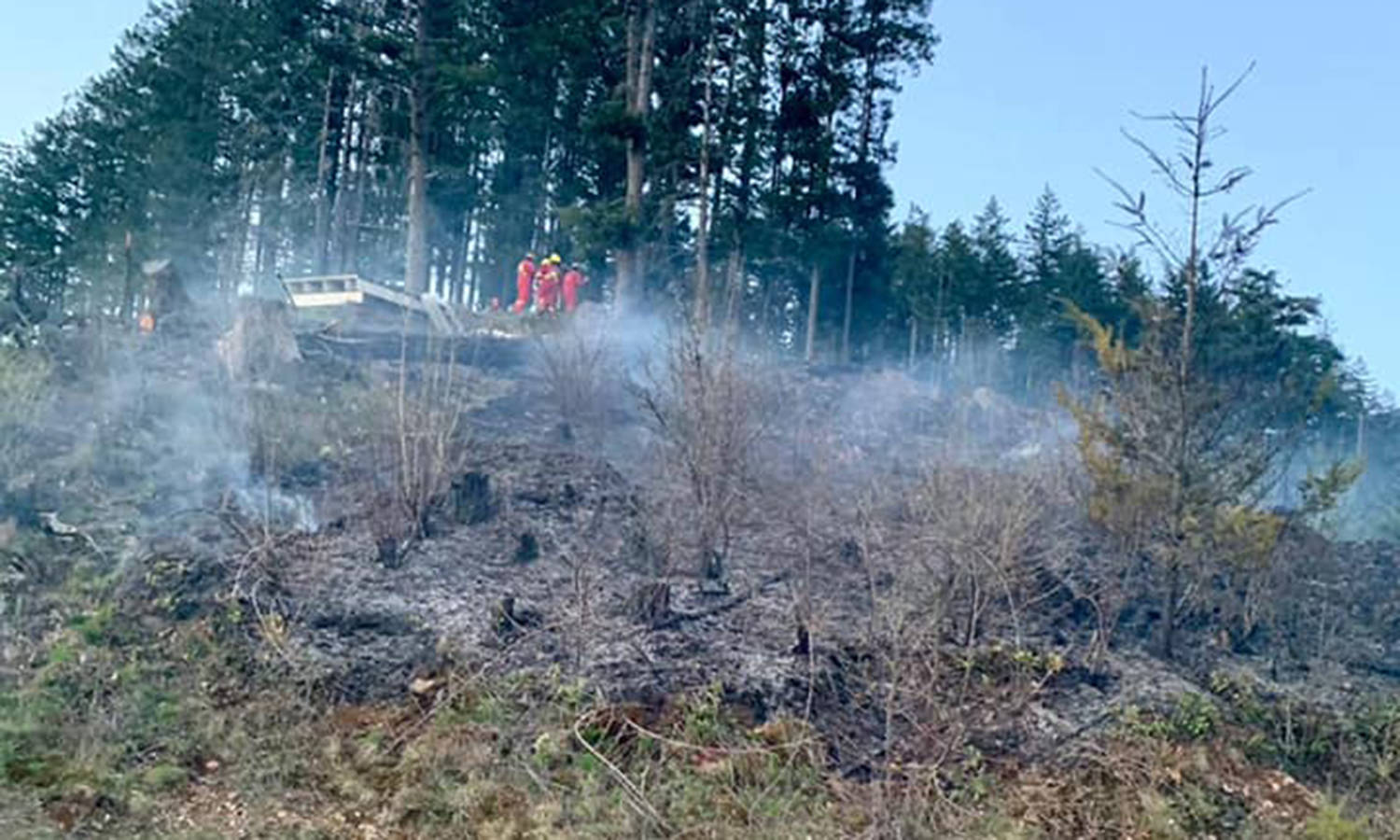 Agassiz, Seabird Island and B.C. Wildfire Service firefighters battled a blaze on Mount Woodside on Wednesday (April 14). The cause of the wildfire remains under investigation as of publication. (Photo/Agassiz Fire Department)