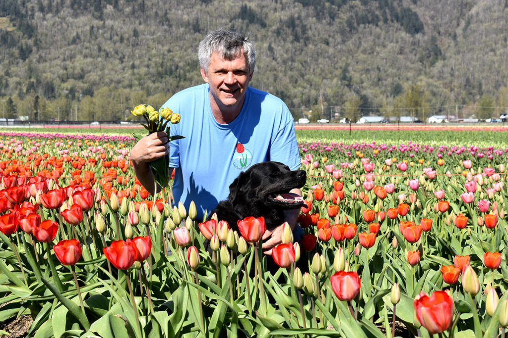 Nick Warmerdam and his dog Diesel are inviting locals to check out the Lakeland Farm U-pick Flower Farm this spring. (Ben Lypka/Abbotsford News)