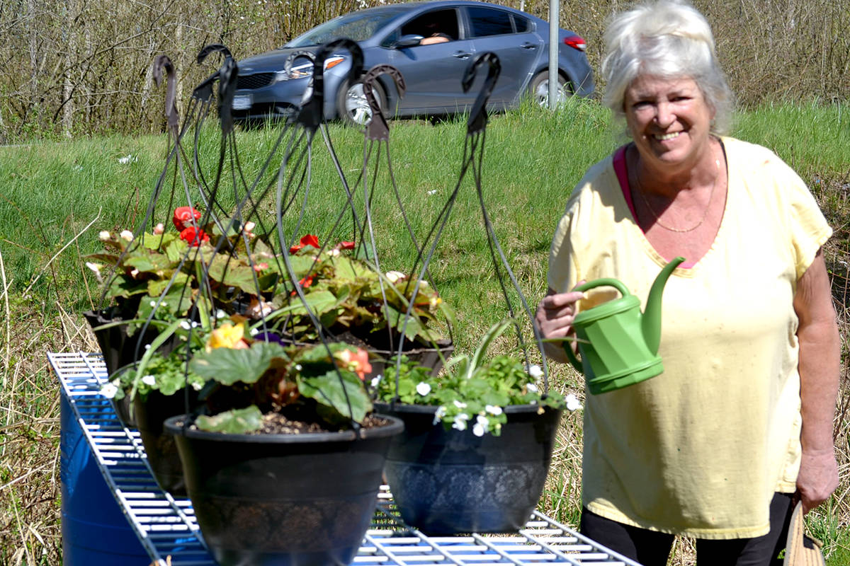 From her home to yours, Jeanie Fraser is selling potted plants outside her home at 240th Street and Fraser Highway. (Ryan Uytdewilligen/Aldergrove Star)