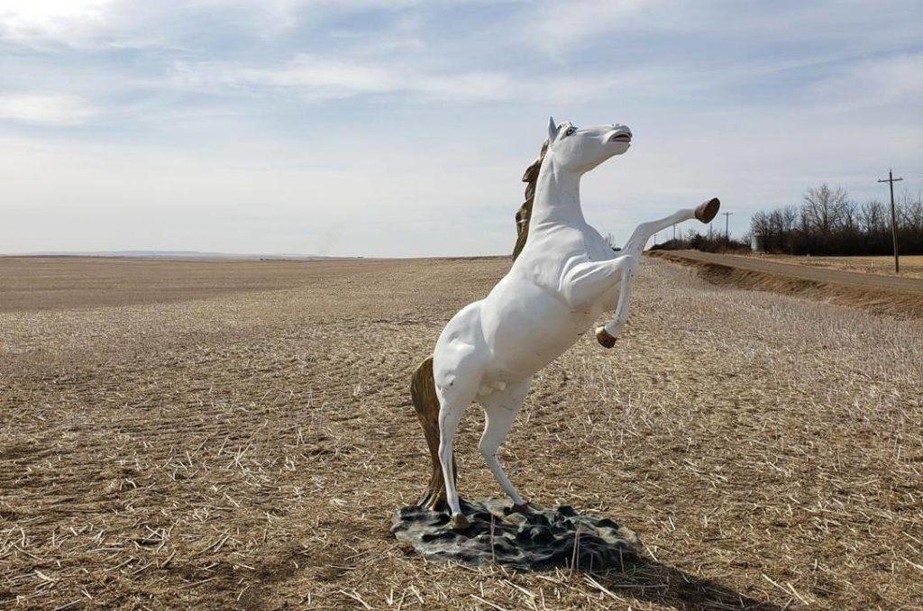 A damaged unicorn statue is shown in a field outside of Delia, Alta. in this undated handout photo. It's not often police can report that a unicorn has been found, but it was the truth Saturday when RCMP said a stolen, stainless-steel statue of the mythical beast had been located in a field not far from where he'd been taken. THE CANADIAN PRESS/HO, RCMP *MANDATORY CREDIT*
