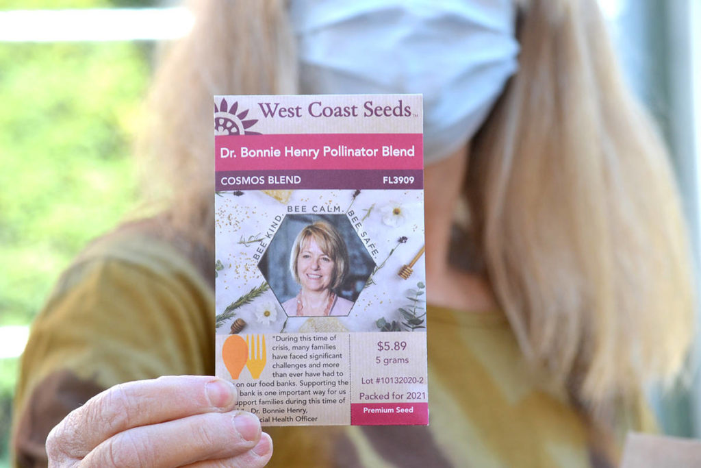 A Dr. Bonnie Henry blend of Cosmos was included in a package BC Farm Museum president Karen Long assembled. (Ryan Uytdewilligen/Aldergrove Star)