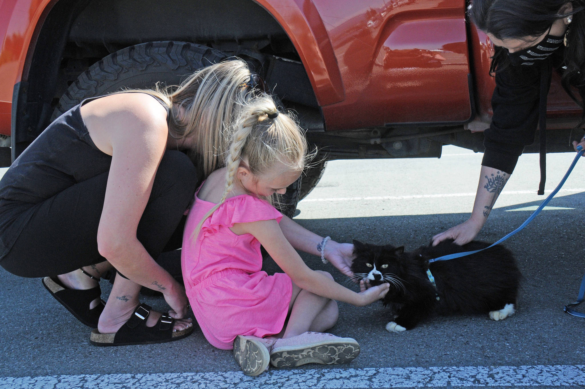 Aria Pendak Jefferson, centre, with her mother Ashley Jefferson, left, meets ChiChi for the first time in two years. Courtney Johnson from Ucluelet, right, rescued ChiChi from a parking lot. (SUSAN QUINN/ Alberni Valley News)