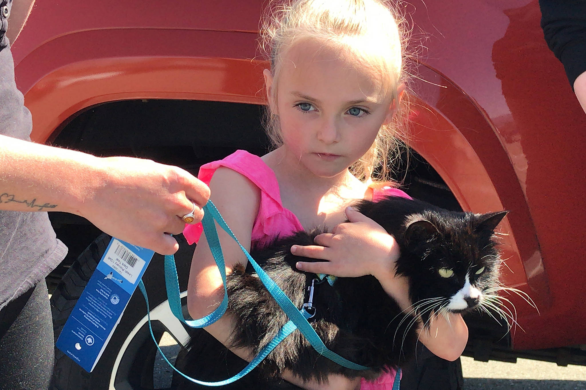 Aria Pendak Jefferson of Courtenay holds a purring ChiChi after the two were reunited in a parking lot in Port Alberni on Wednesday. ChiChi went missing two years ago in Ucluelet. SUSAN QUINN/ Alberni Valley News