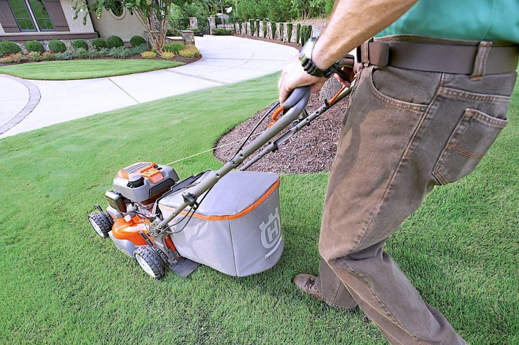 BC Hydro released a survey Thursday, April 22. It found that many British Columbians are unintentionally contributing to climate change with their yard maintenance choices. (Pixabay)