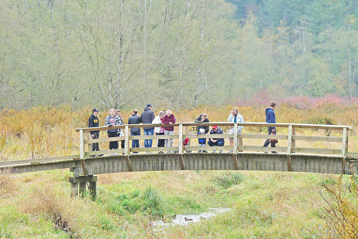 Visitors to Campbell Valley Regional Park enjoy some good weather. (Langley Advance Times files)