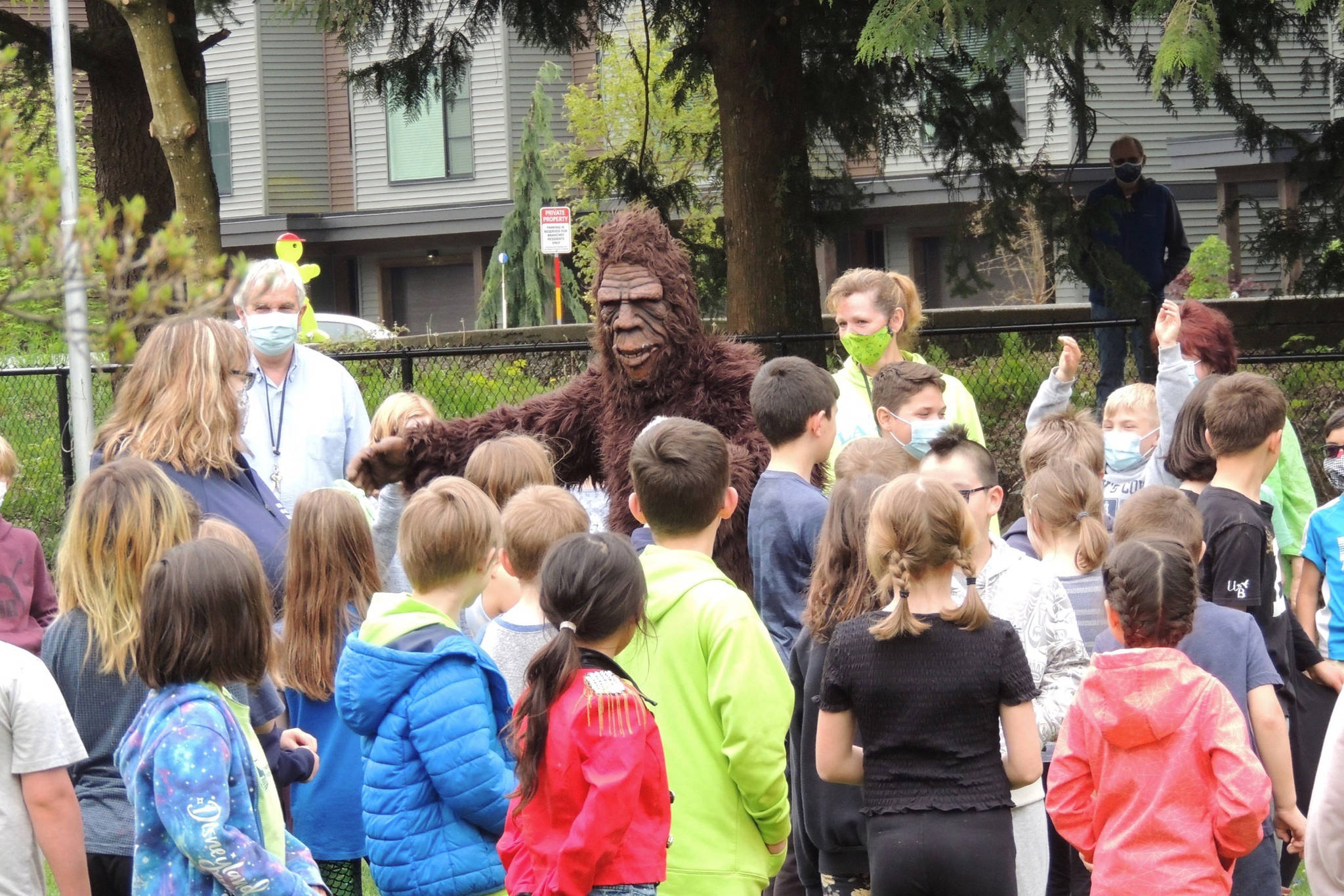 """Sasquatch makes a guest appearance at Harrison Hot Springs Elementary on Monday, May 3. Music Monday featured a song from Todd Richard, singing his frontline worker tribute """"Green and Blue."""" (Adam Louis/Observer)"""