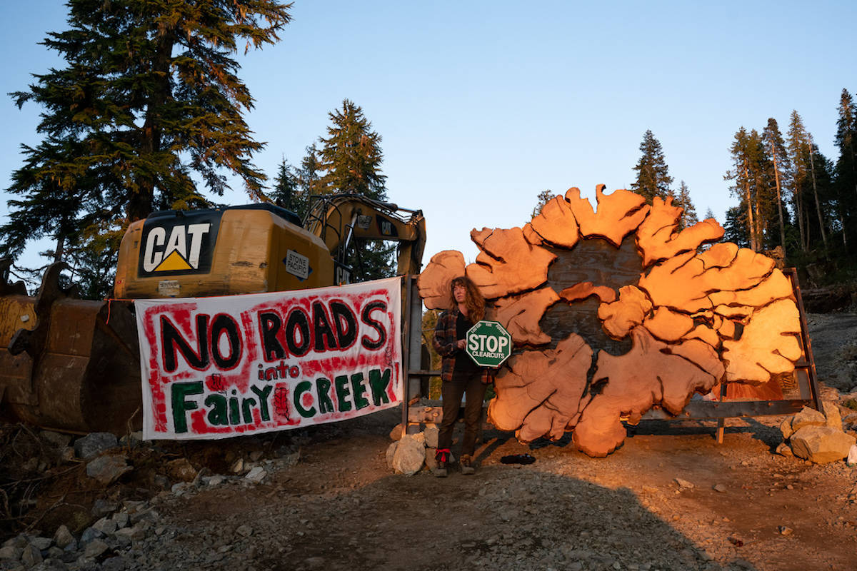 Protesters attempt to stop clear-cutting of old-growth trees in Fairy Creek near Port Renfrew. (Will O'Connell photo)