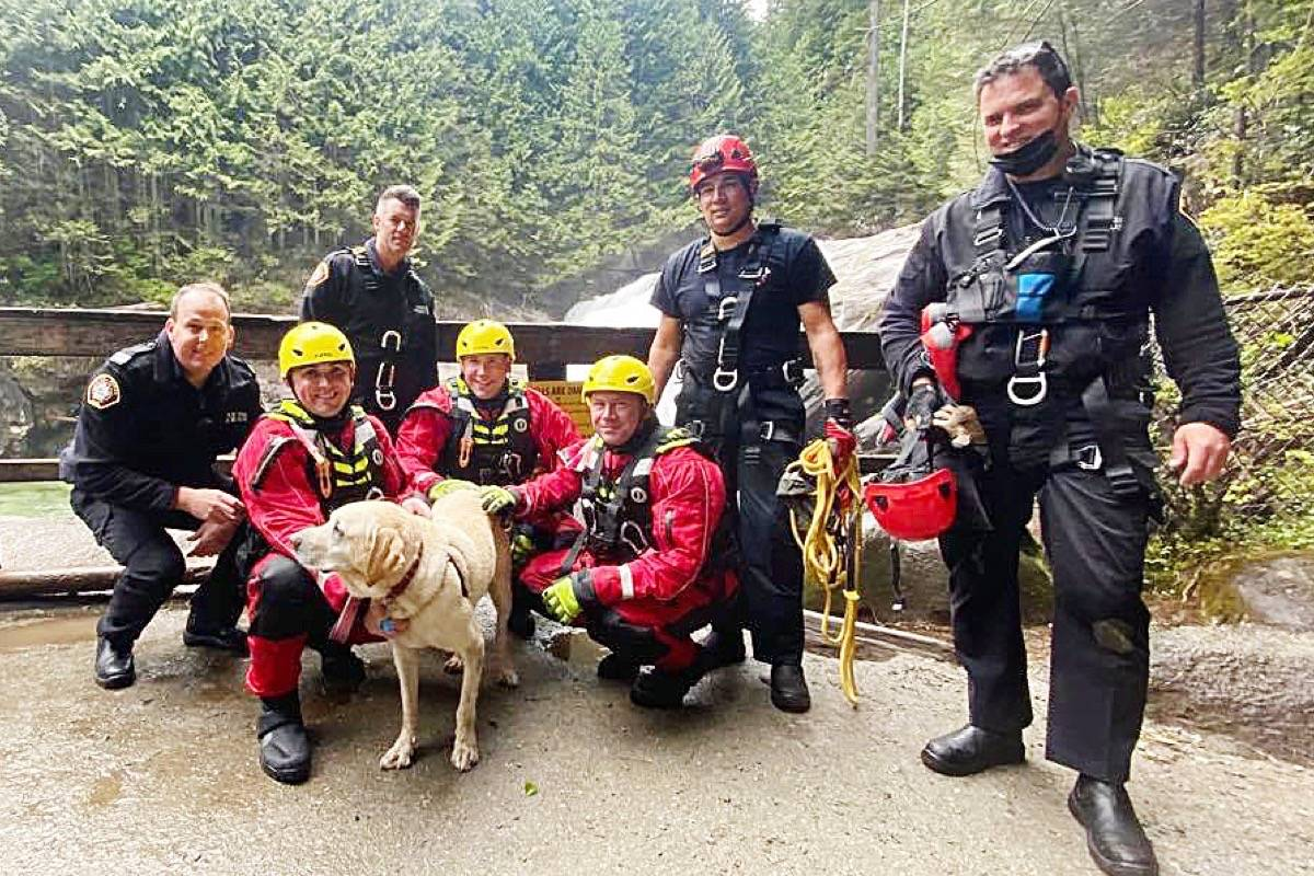 Rex, an elderly golden Labrador retriever, is surrounded by his rescuers in Golden Ears Provincial Park. (Special to The News)