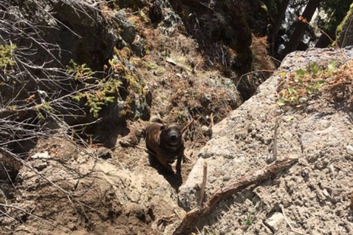 Chevy stranded on a ledge above a rocky canyon at Mimi Falls near Logan Lake, April 28, 2021. (Photo credit: Margot Wikjord)